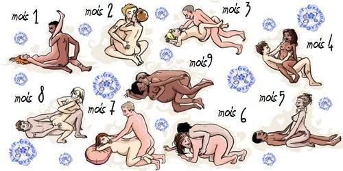 Démonstrations de position de sexe