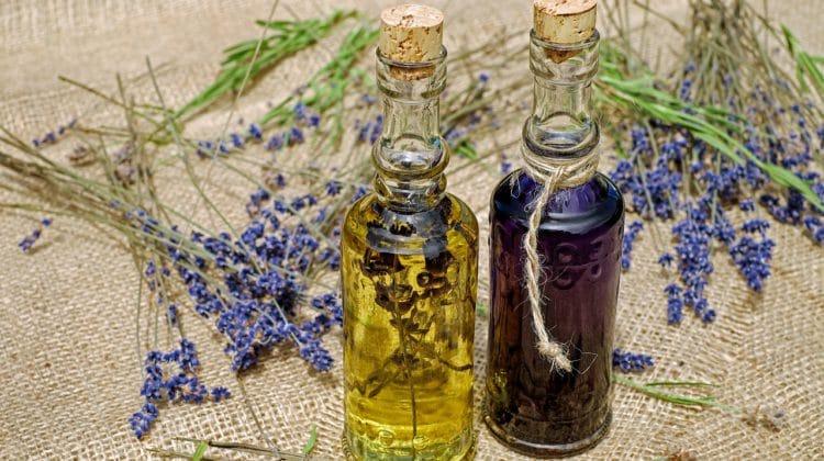 La réelle différence entre aromathérapie et phytothérapie ?