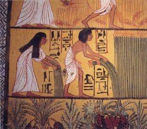 Papyrus illustrant l'importance des plantes aromatiques au temps de l'Egypte antique
